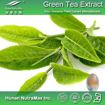 Instant Green Tea Extract , Green Tea Extract , Instant Green Tea P.E.