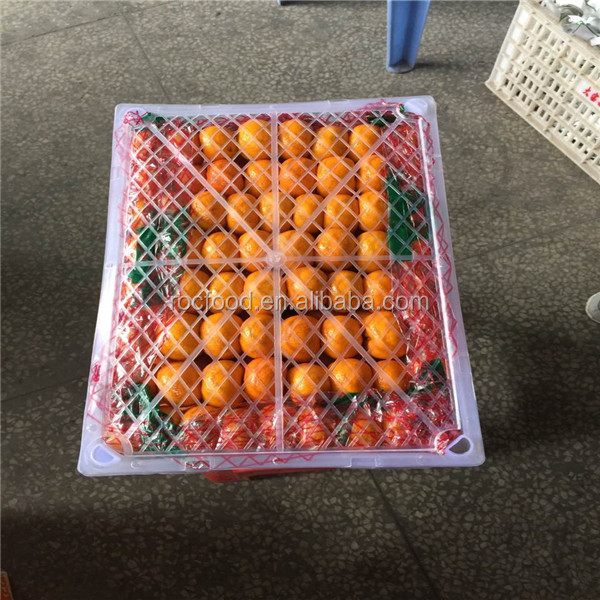 Wholesale Fresh Mandarin Oranges Fruit/Fresh Tangerine 9kg Carton To Russia Area