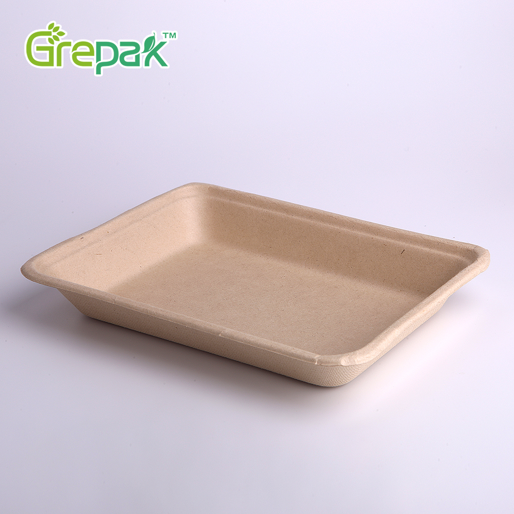 350ml White color sugar cane pulp biodegradable eco-friendly disposable lunch tray
