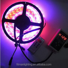 5M 12V Double Row TM1812 Dream Color 5050 120leds/M rgb led strip