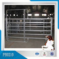 Standard Galvanized 3m High Cattle /Horse Panel