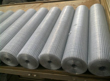 Low carbon steel galvanized welded rabbit cage wire mesh ( SGS )
