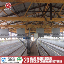 chicken farm layer cages for sale in zimbabwe and Ghana