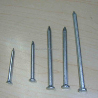 Better quality Concrete nail/Black steel nail of ISO Manufacturer