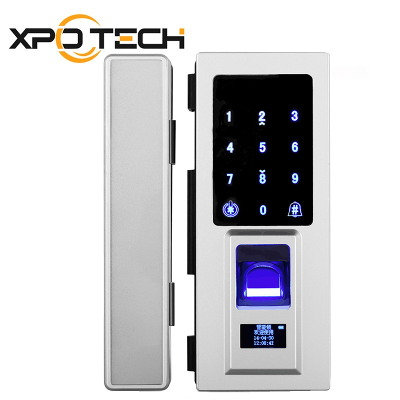 Biometric Glass Door Lock with Card and Password