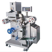 pharmaceutical Model: DLL-160 Automatic tablet strip packing machine with GMP approved