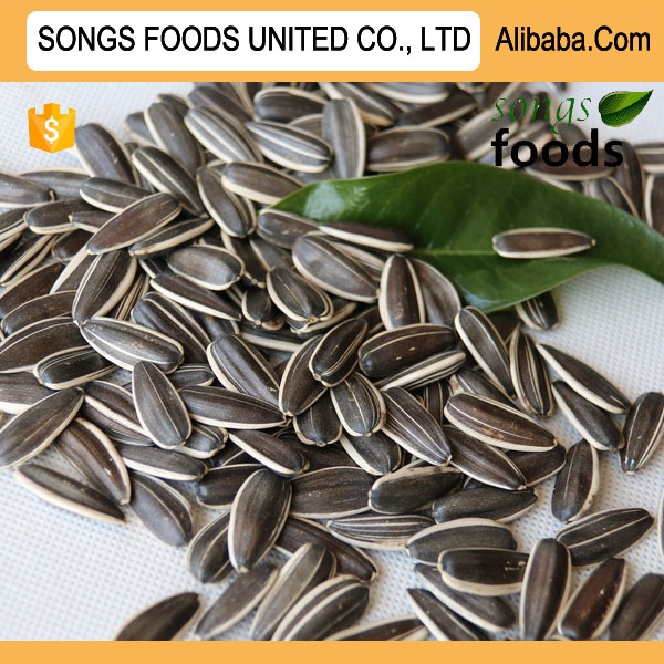 Export To Dubai Sunflower Seeds
