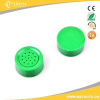 Music recording chip for plush toys