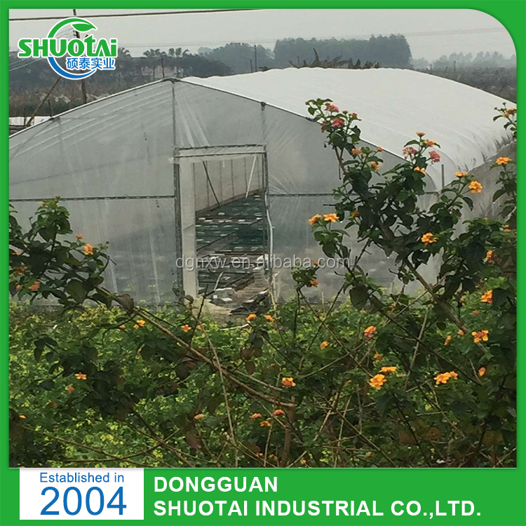 Dongguan Poly Film Plastic Products Mulching Laying Machine Plastic Mulch Film For Green House Plastic Filmlastic film