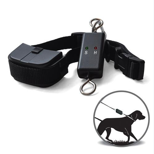Leash Walking Training Device For Dog