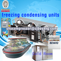 Freezing Condensing units for Industrial water chiller tube ice making machine Snow Block Ice Machine for Seafood