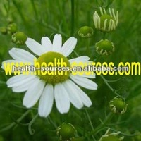 Chamomile plant extract for skin care