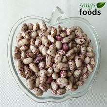 Dried Pinto Beans Bulk/ Light Speckled Kidney Beans