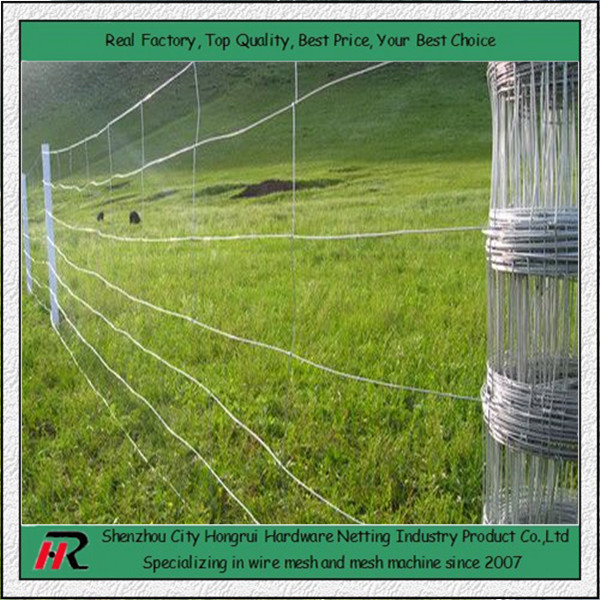 Alibaba Golden supplier Shenzhou hongrui field fence with strong strength and fair price(long history)HOT SALE!