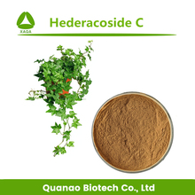 100% Natural herb Ivy Leaf Extract / Hedera Helix Extract Hederacoside C 3%-25% HPLC / UV