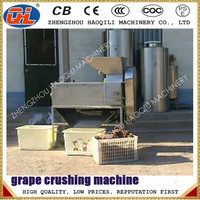 good quality Hydraulic Ice Grape Press Machine | Ice Grape Juice Machine | Ice Wine Press Machine