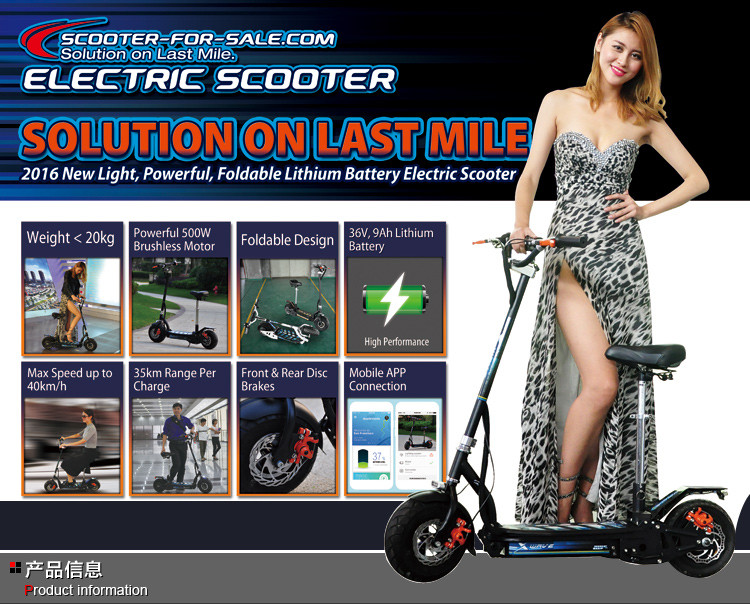 EEC removable double battery electric scooter with seat
