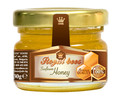 BULGARIAN SUNFLOWER BEE HONEY