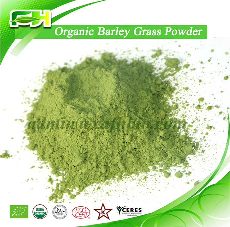 2016 New Certified Organic Barley Grass Juice Powder