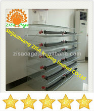 layer quail egg laying cages for sale made in china