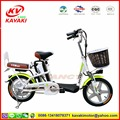 Lithium Battery two seat electric motor road bike 250w motor from China