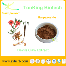 Devils claw factory price for sale Natural 5% Harpagoside devils claw extract