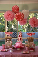 Pink theme Party ideas Tissue Paper Pom Poms Honeycomb Balls Paper lanterns Baby shower decorations