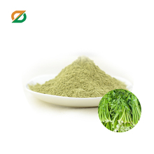 Dehydrated organic bulk dehydrated celery extract juice powder