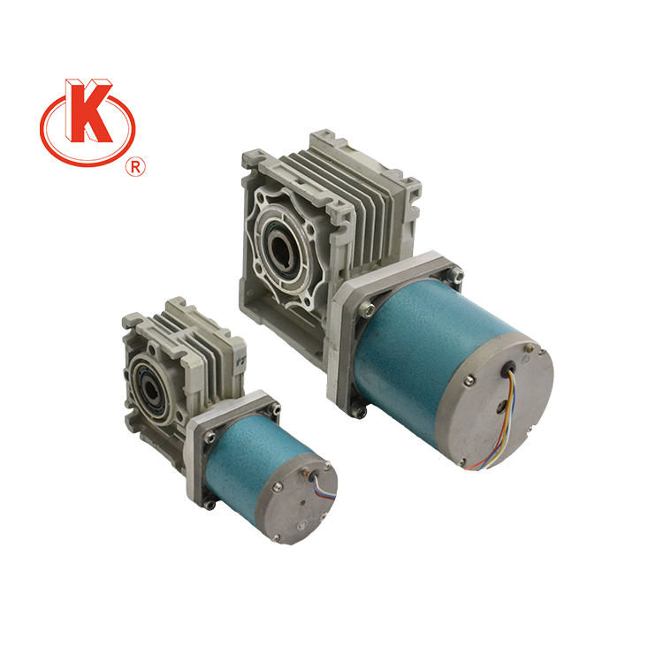 220V 50mm 220v ac motor with gear