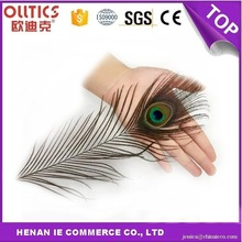 Pure natural cheap artificial beautiful peacock feather for Fashion Decorative