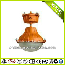 40W electrodeless induction lamp Anti-explosion lamp