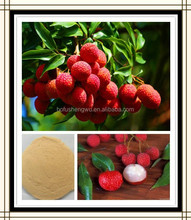 Factory Supply 100% Pure Natural Lychee Seed Extract Lychee Powder