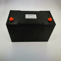 12V 100Ah lifepo4 battery pack with ABS shell,lithium ion battery for electric vehicle,outdoor light,UPS,OEM
