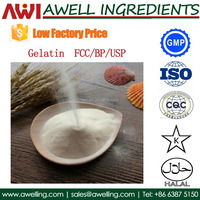 Food grade Gelatin powder with low factory price