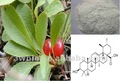 Bearberry extract, 20~98% Ursolic acid 77-52-1