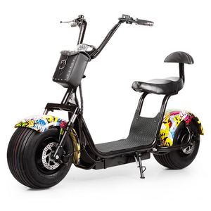 Citycoco in holland warehouse, door to door Two Wheel Smart Balance Electric Scooters with Seat