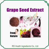 GMP Factory Supplier Grape Seed Extract OPC 95 Proanthocyanidins