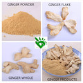 Factory Supply Pure Garlic, Onion and Ginger Powder