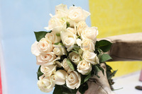 Diversified in packaging hot sale decorative supplies white rose