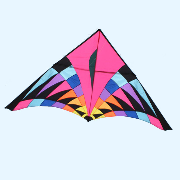 colored 5m delta kite