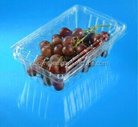 recycle food fruit box