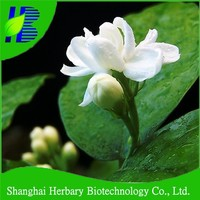 Vanilla plant seeds, jasmine flower seeds for sale