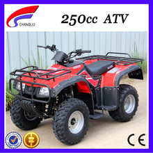 2013 Hot Selling cheap 250cc china made atv
