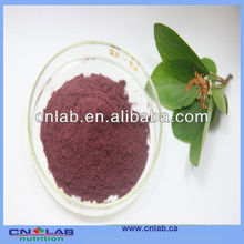 Pure Natural Purple Sweet Potato Color for Food Red Coloring Food Pigment