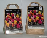 Thriumps tulip mixed bulbs