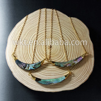 WT-N470 Fashion double bails natural abalone horn necklace, gold shell horn necklace