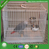 welded Galvanized free rabbit cages