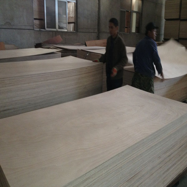 timbers and woods/ plywood manufacture Commercail Plywood with CE certificate