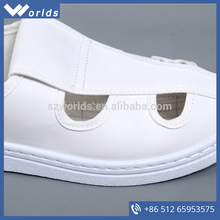 Cleanroom Antistatic Canavs Butterfly Shoes
