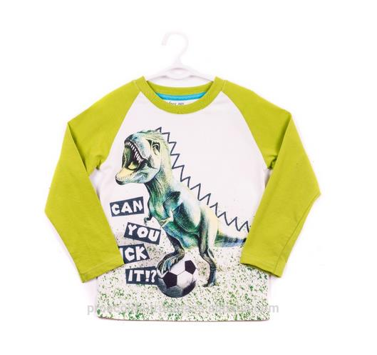 Long Sleeve T-shirt for a Boy 100% Cotton ZB 03266-VG